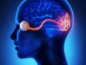 Атрофия зрительного нерва — что это такое, симптомы, как лечить у взрослых и детей?