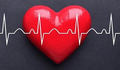 Брадикардия сердца — что это, причины, признаки, симптомы, как лечить, что нужно, а чего нельзя делать?