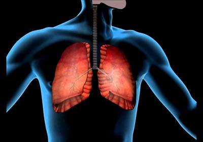 Плеврит легких — что это за болезнь, причины, симптомы и лечение у взрослых