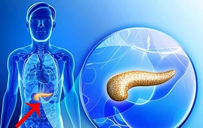 Где находится и как болит поджелудочная железа у человека? Симптомы и лечение