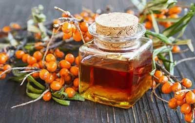 Облепиховое масло — лечебные свойства, польза, вред, как правильно принимать