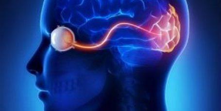 Атрофия зрительного нерва – что это такое, симптомы, как лечить у взрослых и детей?
