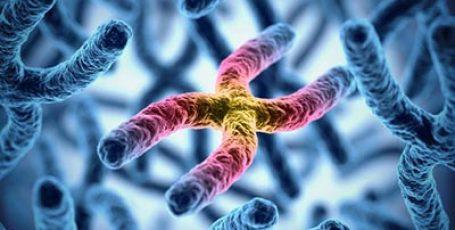 Мукополисахаридоз – что это за болезнь, причины, типы, симптомы, лечение и клинические рекомендации