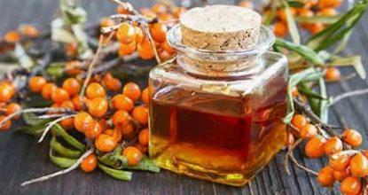 Облепиховое масло – лечебные свойства, польза, вред, как правильно принимать