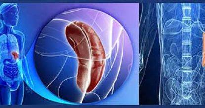 Рак селезенки – причины, симптомы, первые признаки опухоли у человека, метастазы